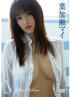 葉加瀬マイ 「M」 サンプル動画