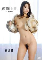 向井藍 「鑑賞 Doll!」 サンプル動画